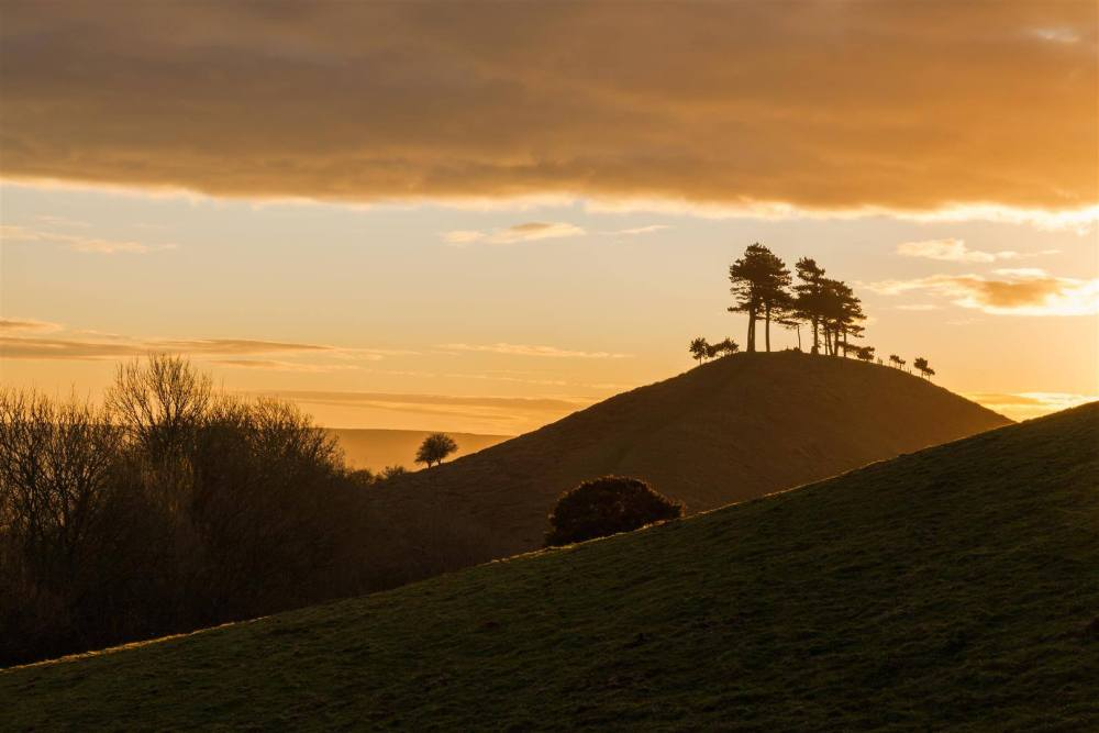 colmers-hill-walks-near-bridport