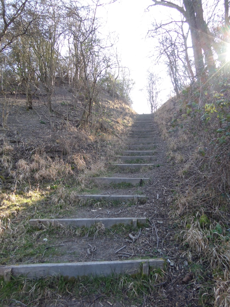 harlington-walks-about-the-journey