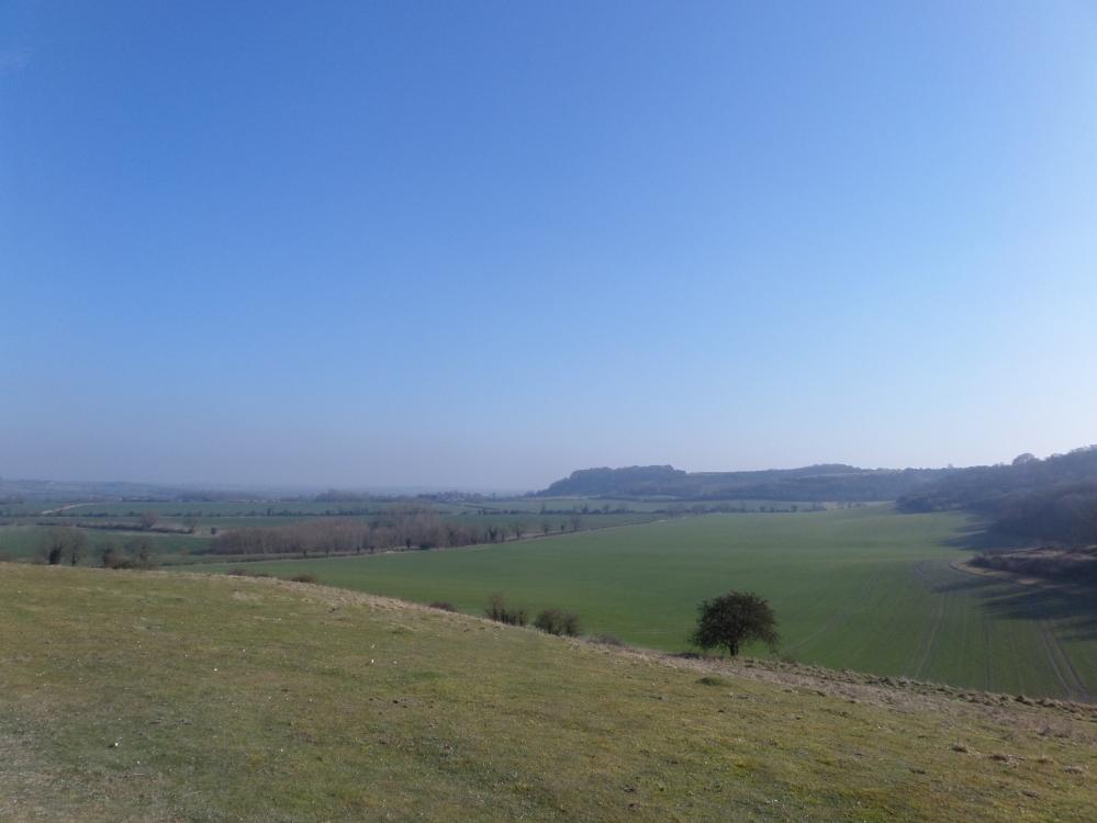 harlington-walks-view-of-sharpenhoe-clappers