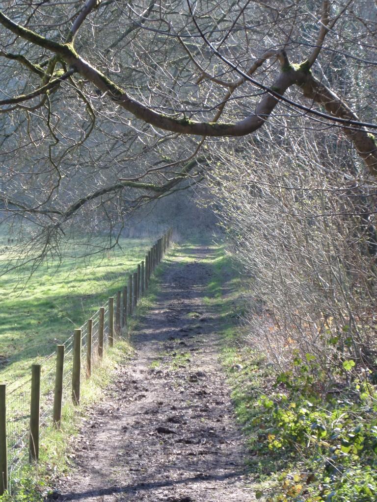 harlington-walks-oileskin-hill-path