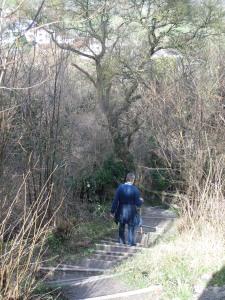 harlington-walks-149-steps-sharpenhoe-clappers