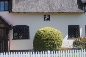 walks-near-harlington-lilley-silver-lion