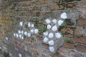 scallop-shells-near-st-albans-abbey
