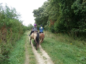 the-ridgeway-national-trail-near-chinnor