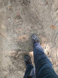sand-on-the-pilgirms-way