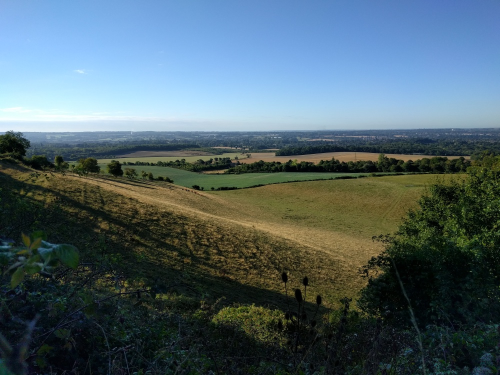 view-from-along-the-pilgrims-way-kent