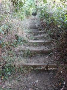 steps-on-the-pilgrims-way