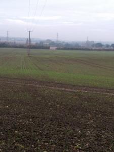 a-walk-near-harlington