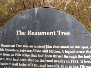 the-beaumont-tree-silsoe