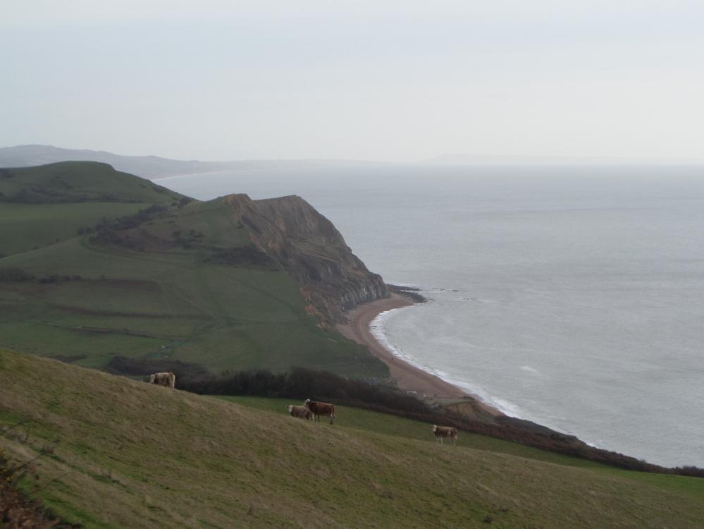 view-from-golden-cap