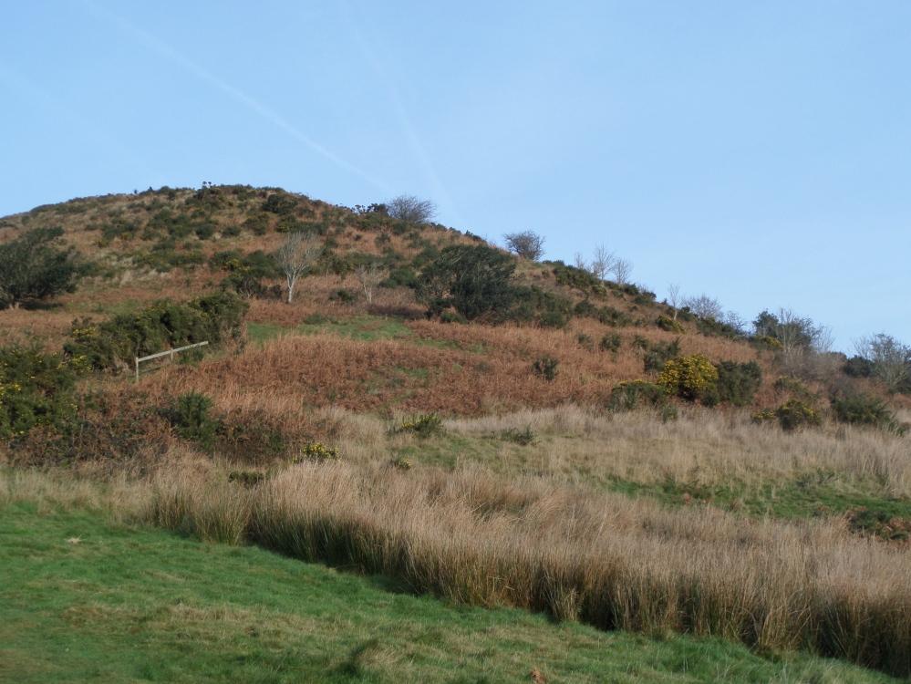 summit-of-pilsdon-pen