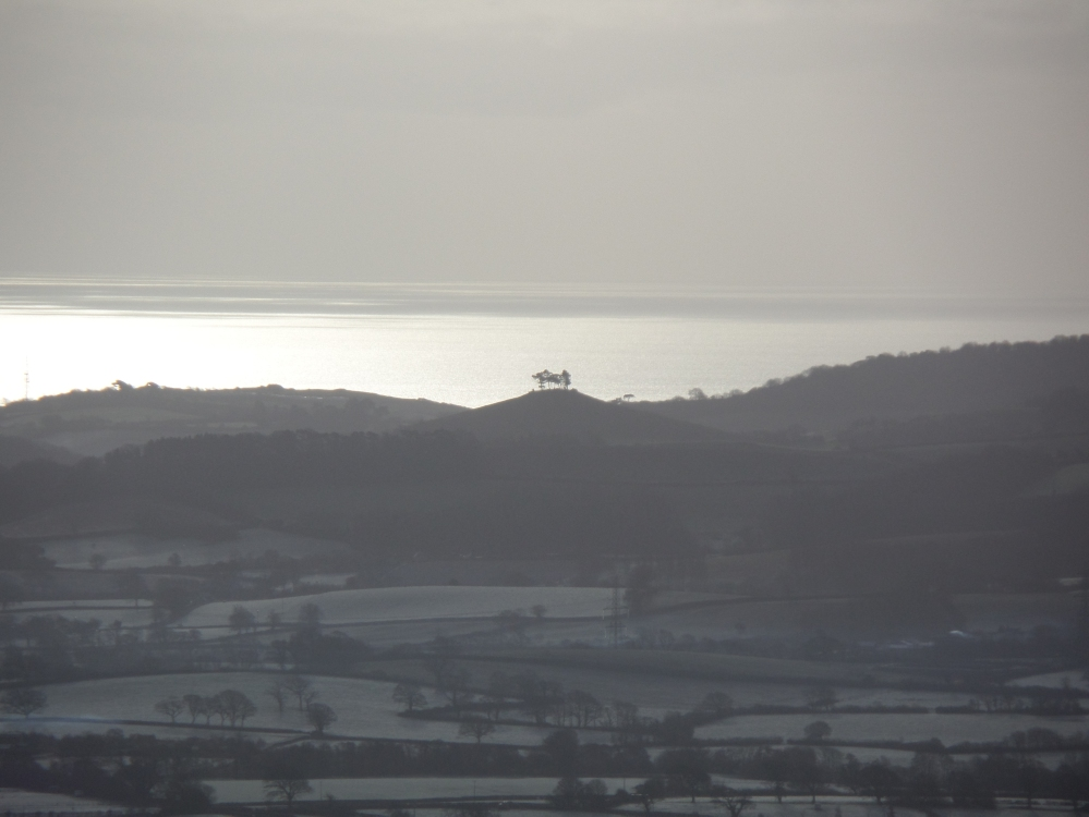 colmers-hill-from-pilsdon-pen