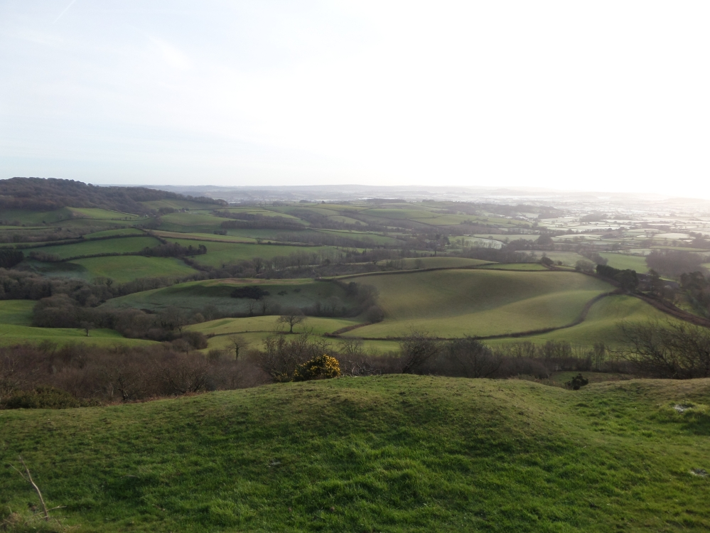 view-from-pilsdon-pen