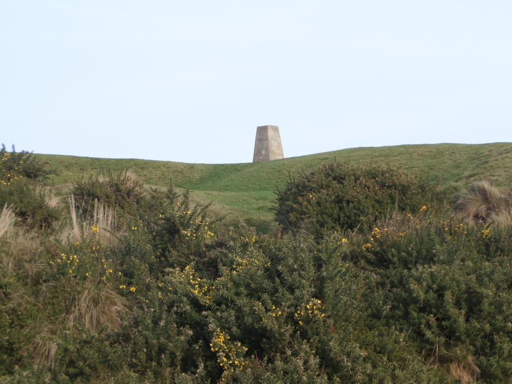 summit-of-pilsdon-pen