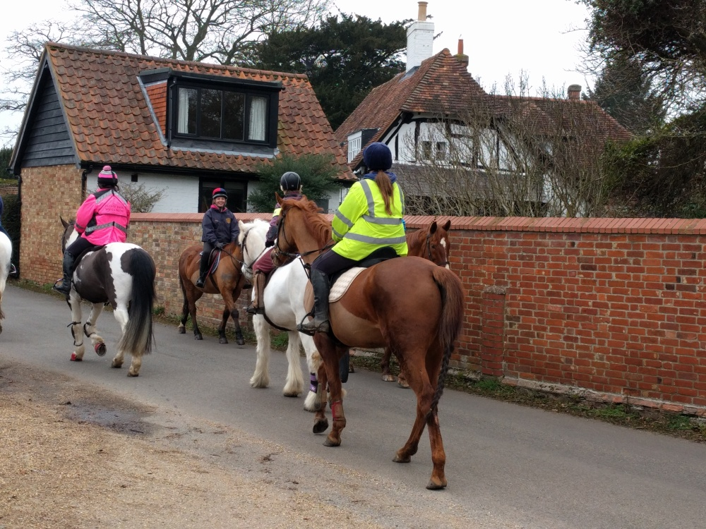 horses-in-eversholt