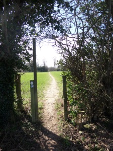 along-the-hertfordshire-way