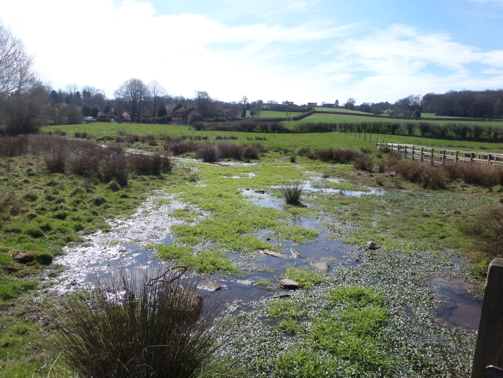 the-river-gage-the hertfordshire-way