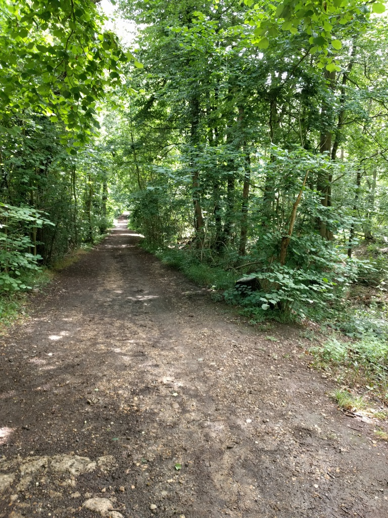 bricket-wood-common