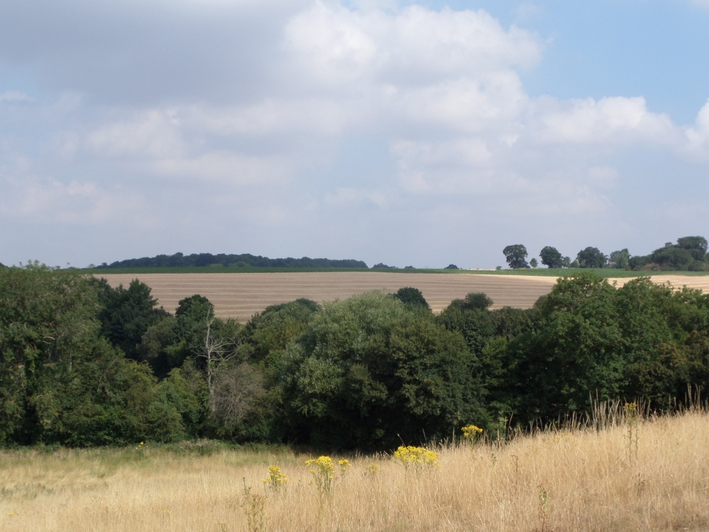 the-hertfordshire-way