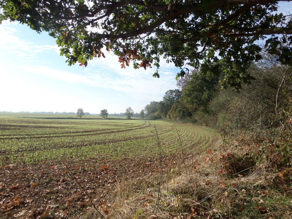 the-hertfordshire-way