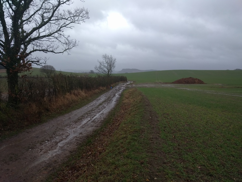 the-tinker-strail-harlington-sharpenhoe-clappers