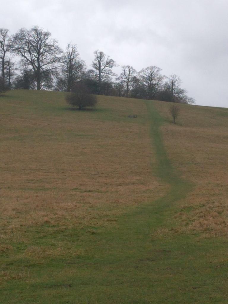 harlington-hill-beds
